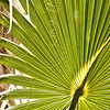 February 21, 2010