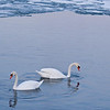 March 18, 2010