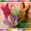 April 12, 2009